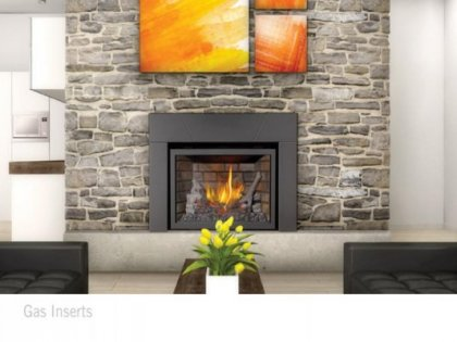 Colorado Comfort Products Inc 1 Fireplaces Inserts